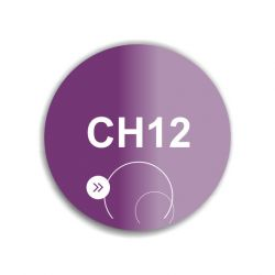 SoKwik - CH12 - So Dip Powder (29g)