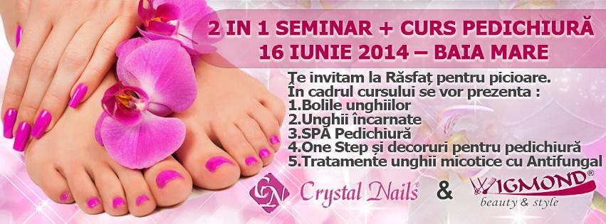 2 in 1 Seminar + Curs Pedichiura Baia Mare