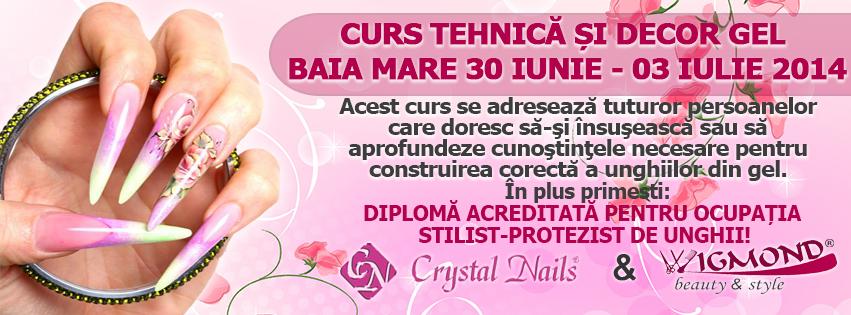 Curs Tehnica si decor Gel Baia Mare 30 iunie - 03 iulie 2014