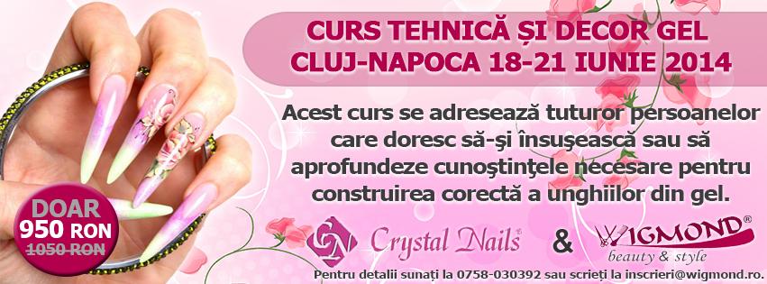 Curs Tehnica si decor Gel Cluj-Napoca 18-21 iunie 2014