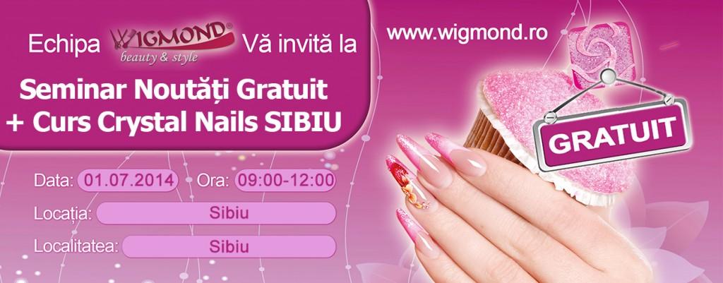 Seminar Noutati + Curs de Unghii Tehnice Crystal Nails SIBIU 01 iulie 2014