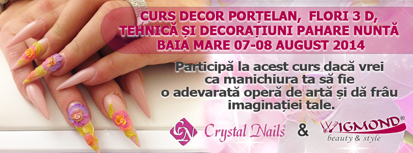 Curs Decor Portelan  Flori 3 D BaiaMare 07-08 august 2014