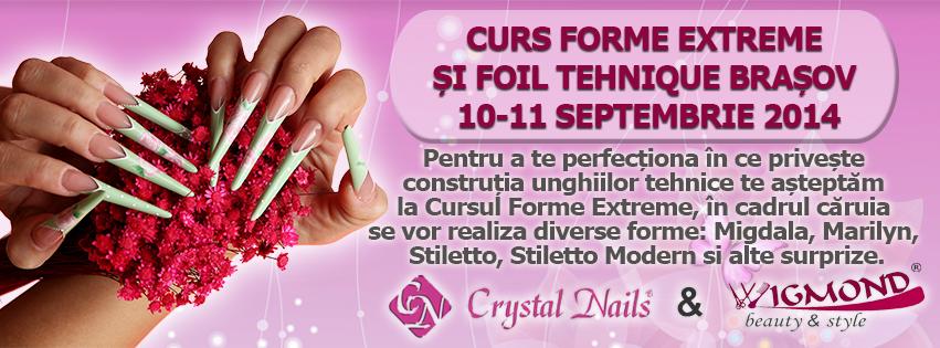 Curs Forme Extreme si Foil Tehnique Brasov 10-11 septembrie 2014