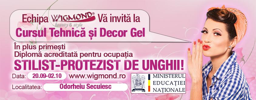 Curs Tehnica si decor Gel Odorheiu Secuiesc 29 septembrie - 02 octombrie 2014