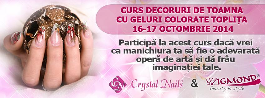 Curs Decoruri de Toamna cu Geluri Colorate Toplita 16-17 octombrie 2014