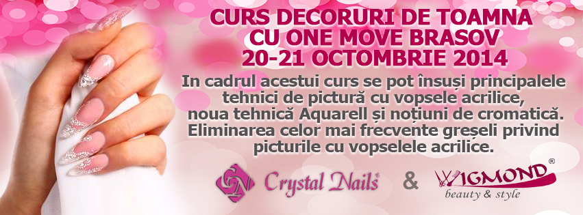 Curs One Move Brasov 20-21 octombrie 2014
