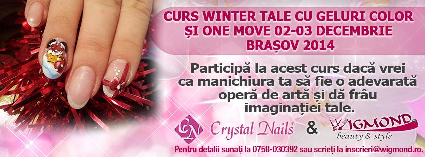 Curs Winter Tale cu Geluri Color si One move 02-03 decembrie 2014 Brasov