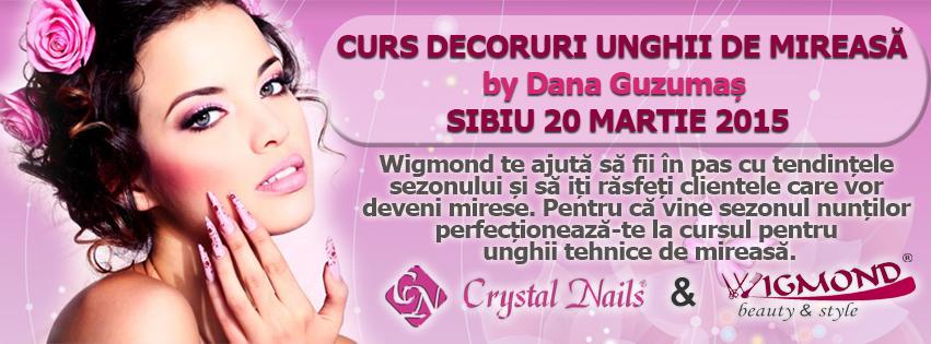 Curs unghii de mireasa Sibiu 20 martie 2015