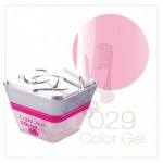 Color Gel - 029