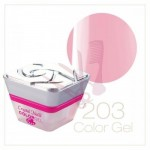 Color Gel - 203