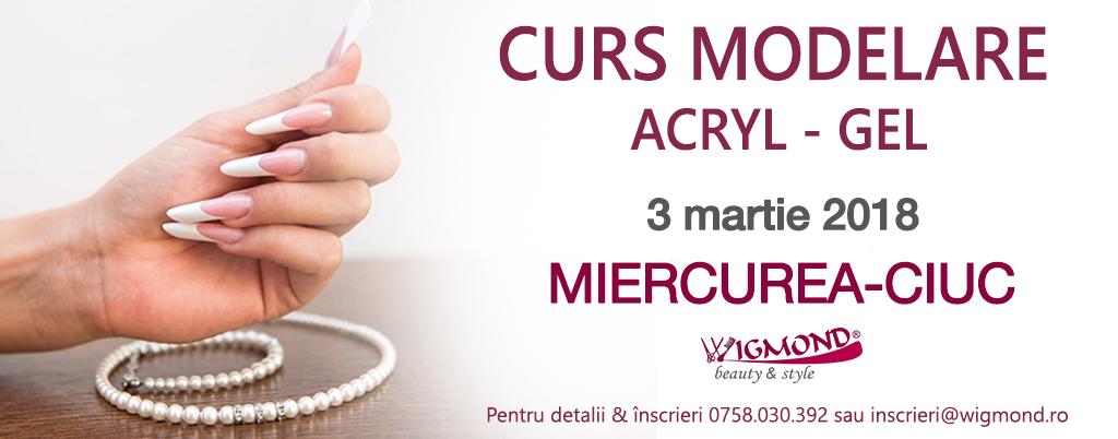 curs modelare acryl-gel Miercurea-ciuc 3 martie 2018