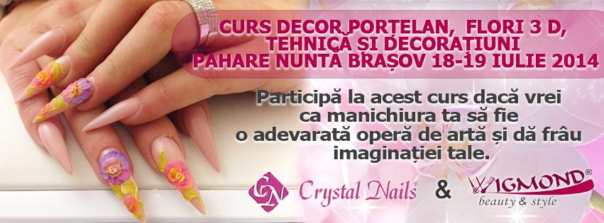 Curs Decor Portelan  Flori 3 D bRASOV 18-19 iulie 2014