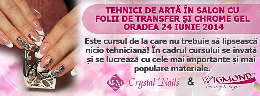 Curs Tehnici de arta in salon cu folii de transfer si Chrome Gel Oradea 24 iunie 2014