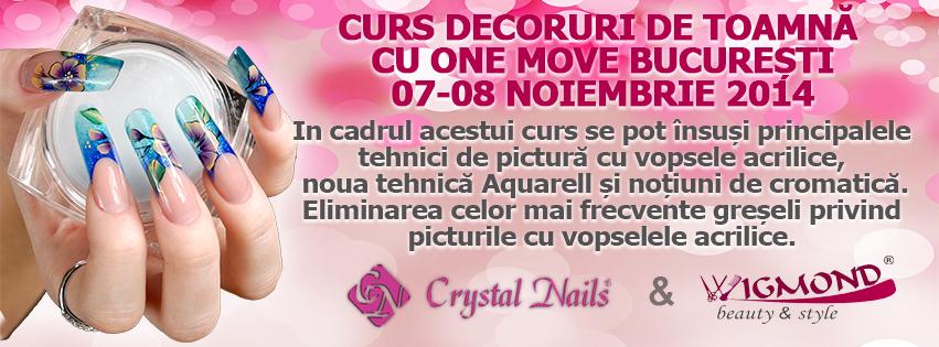 Curs One Move Bucuresti 07-08 noiembrie 2014