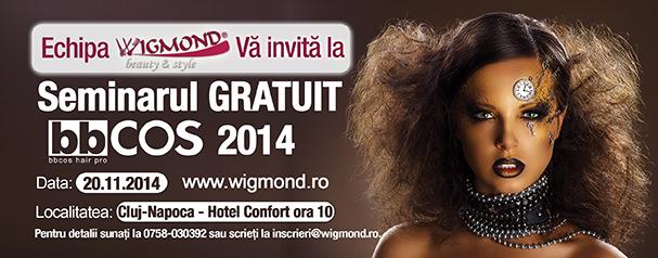 Seminar BBCOS Cluj 2014