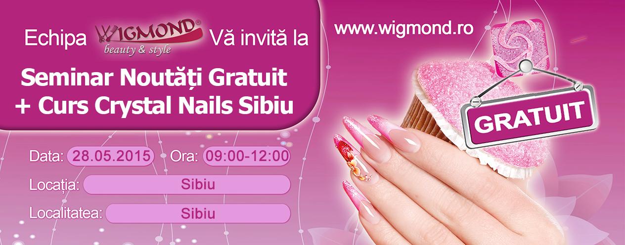 Seminar Noutati + Curs de Unghii Tehnice Crystal Nails Sibiu 28 mai 2015