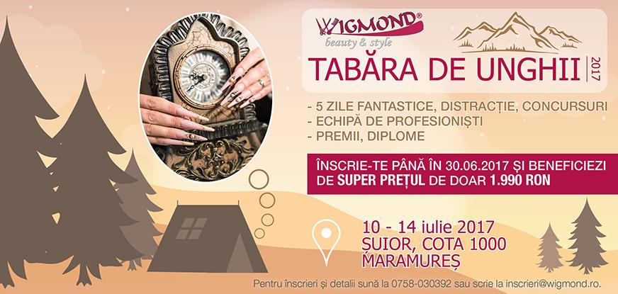 Flyer Tabara 2017 iunie 2017