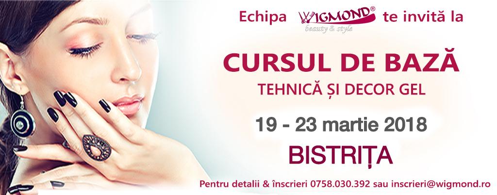 curs-de-baza-Bistrita-19-23 martie -2018