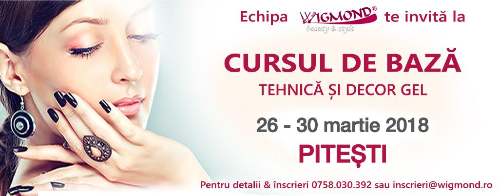 curs-de-baza-26-30 martie 2018 la PITESTI
