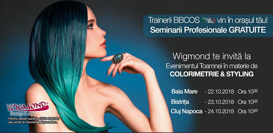Seminar BBCOS 2018