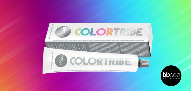 Vopsea Colorată - Colorare cu pigmenți direcți